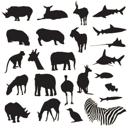 Safari Zoo Vector Silhouette Icons
