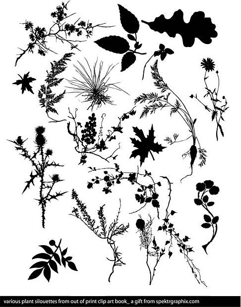 Floral Vector Plants