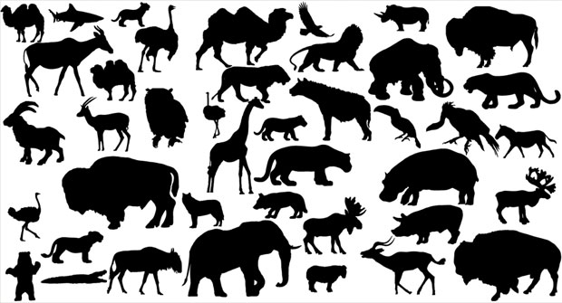 41 Zoo Vector Animals Silhouette