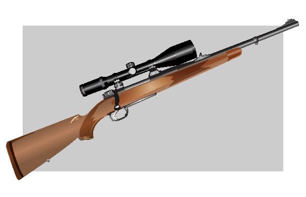 Vector Sniper Rifle