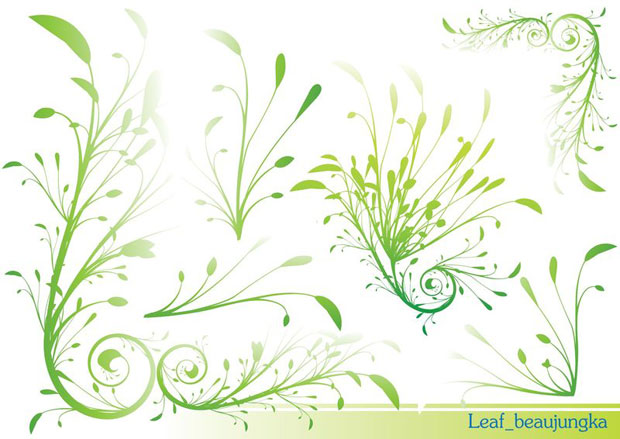 Graceful Leaves Twirls Vector