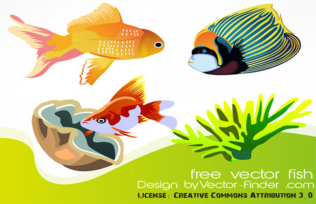 Aquatic Life Vector Art